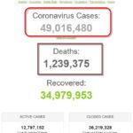 Số bệnh nhân COVID-19 trên thế giới đã vượt mốc 49 triệu người
