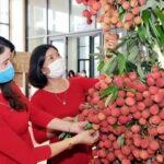 Lazada phối hợp giúp tiêu thụ vải thiều Bắc Giang giữa tâm dịch COVID-19