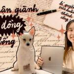 Google chia sẻ các mẹo hay giúp săn học bổng thành công